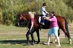 Иппотерапия и лечебная верховая езда (ЛВЕ) - На Хохме.
