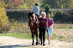 Иппотерапия и лечебная верховая езда (ЛВЕ) - По большому кругу. Езда спиной к направлению движения