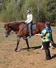 Иппотерапия и лечебная верховая езда (ЛВЕ) - Тренировка. Руслан готовится к соревнованиям