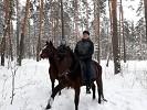 Прогулки на лошадях - Новогодние прогулки