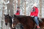 Прогулки на лошадях - Прогулка (с сопровождением!)