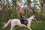 Фотосессия с лошадьми - На рыси