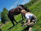 Лошади - Лето в моменте. Катя